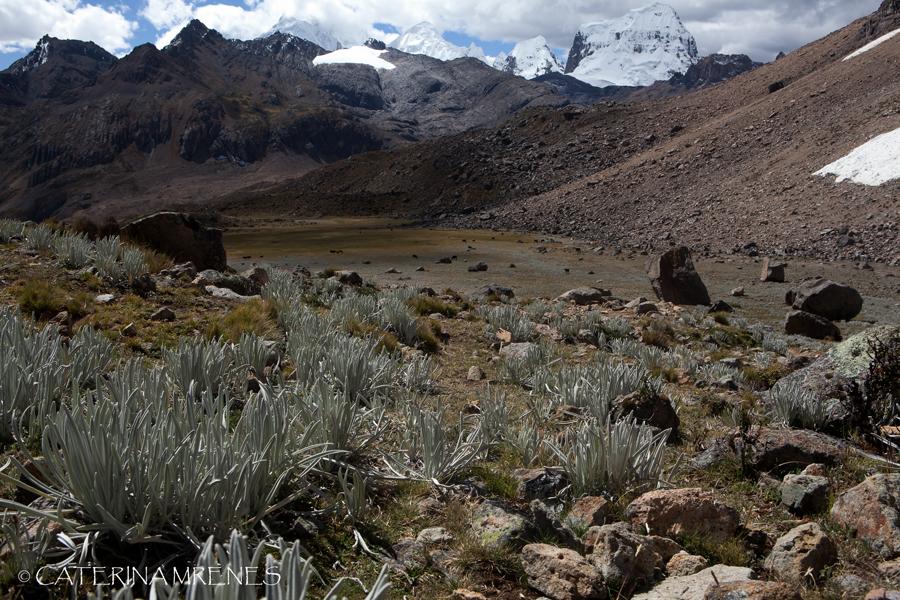 Mount Trapecio