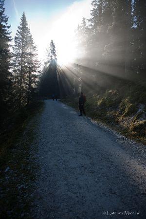 Der Weg von der Ehrwalder Alm zur Coburger Hütte